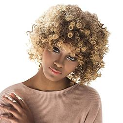 Aibelly Synthetic Full Wig Short Afro Curly Mixed Color Side