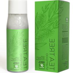 Natural Tea Tree Oil Shampoo for Dandruff and Itchy Scalp -